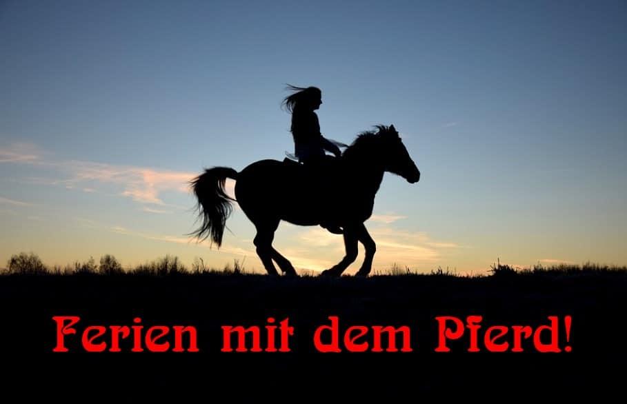 [ FRAUEN! } Nicht ohne mein Pferd!