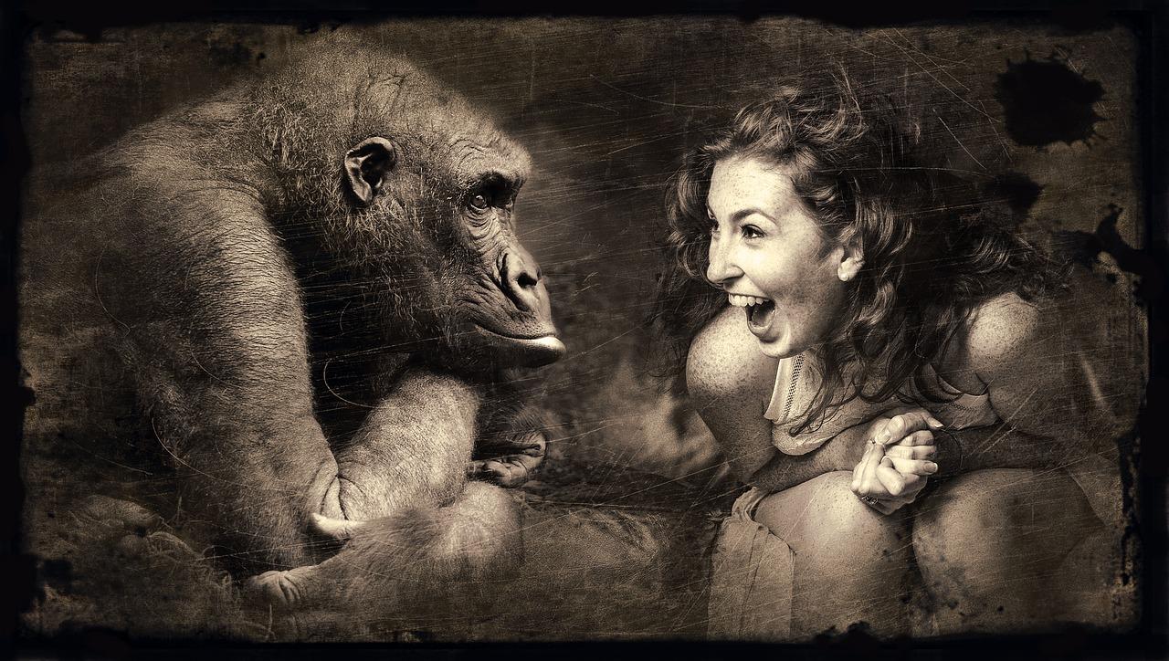 [ Eifersucht.!? } Primaten stören Beziehungen von Artgenossen!