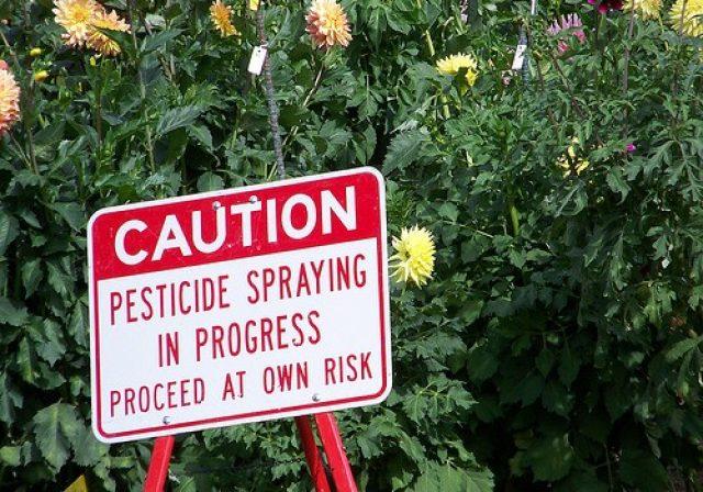 Vorsicht: Pestizide gefährden die Gesundheit (Foto: flickr.com/jetsandzeppelins)