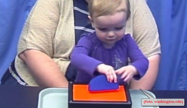 Spielen: Kinder merken, was Erfolg verspricht (Foto: washington.edu)